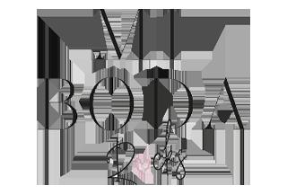 mi boda rocks logo